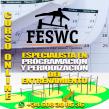 Entrenador/a especialista en Programación y Periodización del entrenamiento.